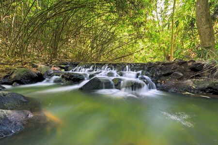 Green stream Stock Photo - 17015359