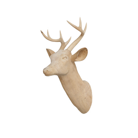 Wooden deer head isolated on white  photo