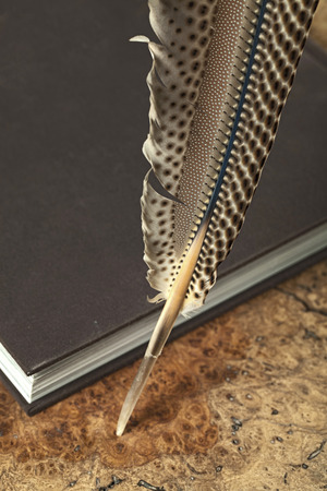 Quill with diary on wooden table  Still life  photo