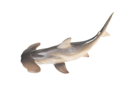 Plastic hammerhead shark toy isolated on white background photo