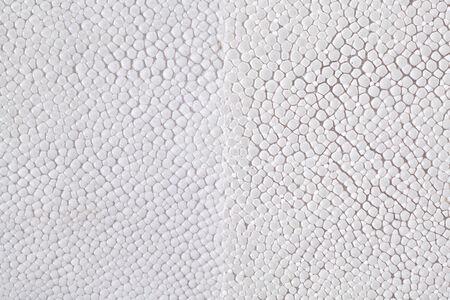 two tone: Two tone ray skin texture