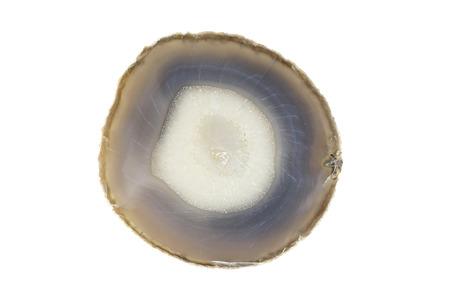petrified fossil: Petrified wood coaster isolated on white background Stock Photo