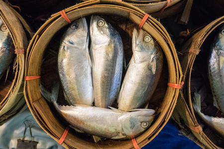 Three mackerel on basket in market photo