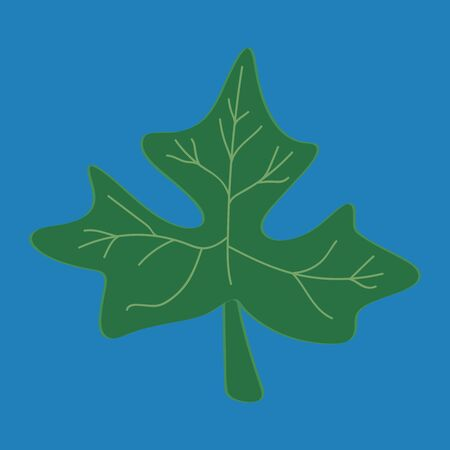 echo: Fresh papaya leaf on blue background Illustration