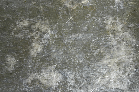 Shell plate background texture