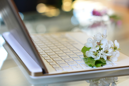 Spring in office. Cherry tree blossoms on white keyboard, bokeh background