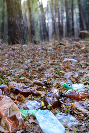 Plastic bottle garbage in a forest. Environment pollution Stock Photo