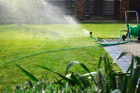 Automatic sprinkler sprays water over green grass