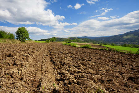 Plowed land, preparation for the next harvest