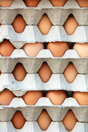 a pattern of packs of egg photo