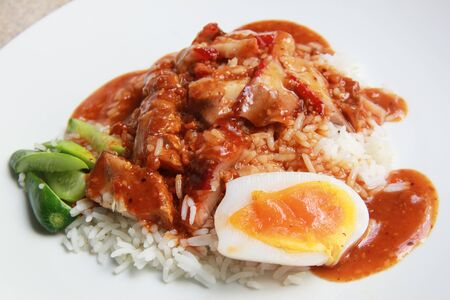 rice with bbq and crispy pork with gravy on top Stock Photo - 11396480