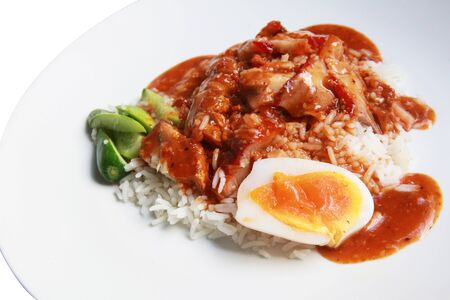 isolated rice with bbq and crispy pork Stock Photo - 11396479