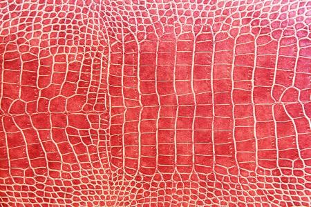 piel: cocodrilo textura de la piel de color rojo como fondo de pantalla