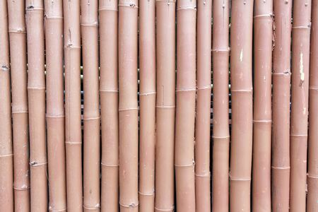 pattern of a bamboo wall photo