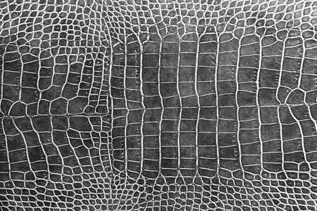 peau cuir: noir texture de la peau de crocodile comme fond d'�cran