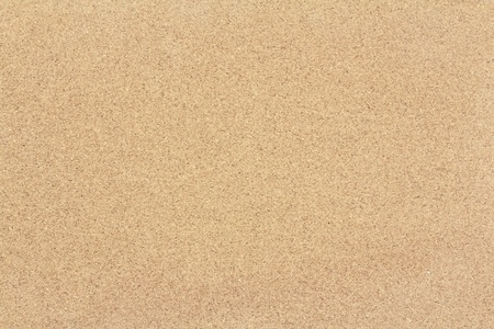 background of brown dork board texture Stock Photo - 13749050