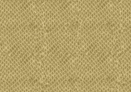 background of brown snake skin texture photo
