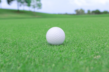 white golf ball on a green photo
