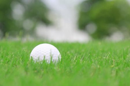 golf ball on a rough grass photo