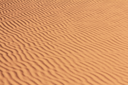 background of sand pattern in sahara dessert Stock Photo - 16836698