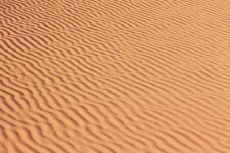 background of sand pattern in sahara dessert Stock Photo - 16836698