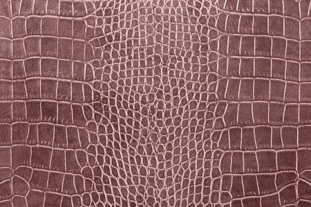brown crocodile skin texture as a wallpaper Stok Fotoğraf - 17062781