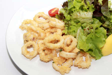 isolated calamari on a plate photo