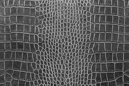 black crocodile skin texture as a wallpaper Stok Fotoğraf