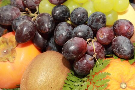 background ofvarious kind of tropical fruit photo