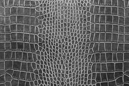 black crocodile skin texture as a wallpaper Stok Fotoğraf