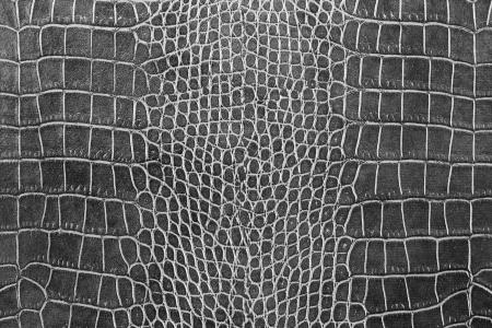 black crocodile skin texture as a wallpaper Archivio Fotografico