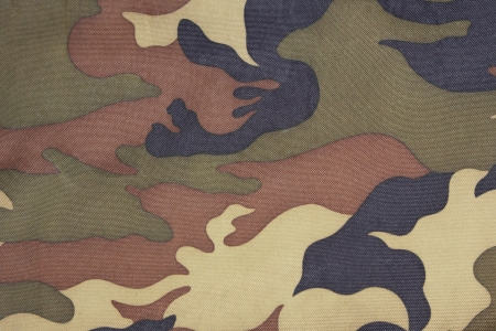 camouflage pattern: background of green camo pattern