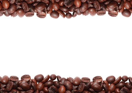 roasted coffee bean in white background photo