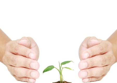 fide: eko sistemi için izole el koruma tesisi
