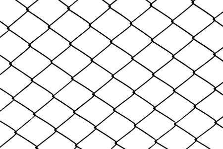isolated mesh wire in white background photo