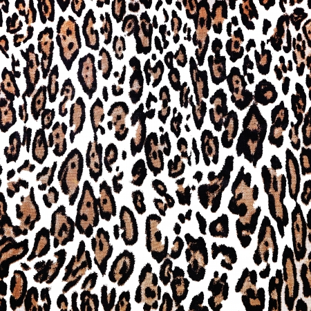 background of leopard skin pattern Stock Photo