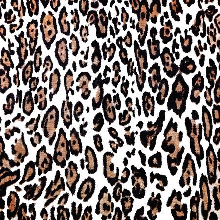 background of leopard skin pattern Stock Photo