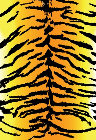 background of seamless tiger skin texture photo
