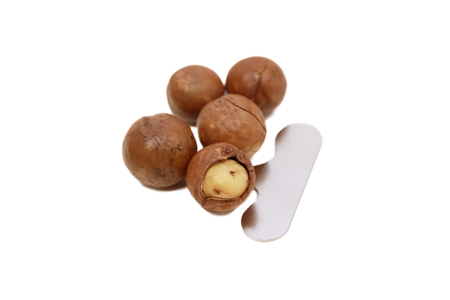 isolated shelled and unshelled macadamia nuts photo
