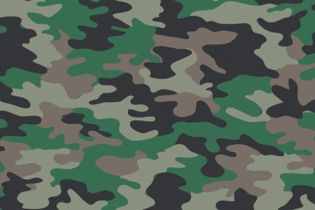 background of soldier green camo pattern photo
