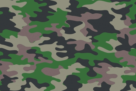 background of soldier green camo pattern 写真素材