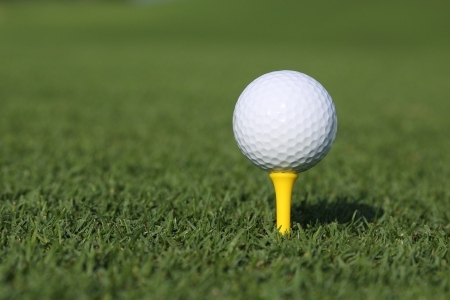 golf ball on a tee on a green grass photo