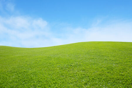 green land: background of green field with blue sky