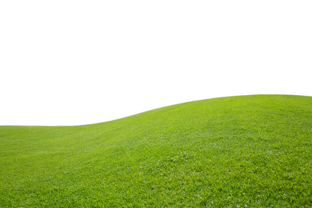 champ vert: isolated green field on white background Banque d'images