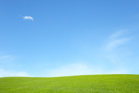 blue sky and fields: background of green field with blue sky