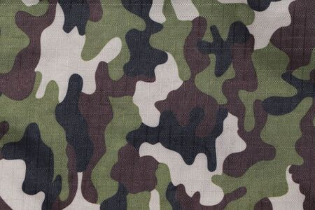 camo: background of soldier green camo