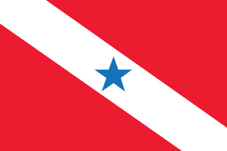foreign country: vector background of para flag state