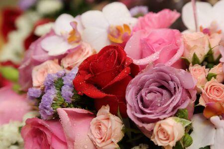 caes: background of flower bouquets Foto de archivo