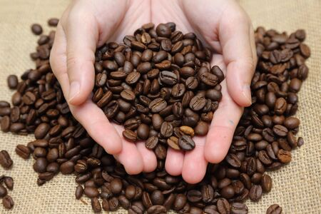 cupped: background of  roasted coffee beans pouring out of cupped hands into a burlap sack