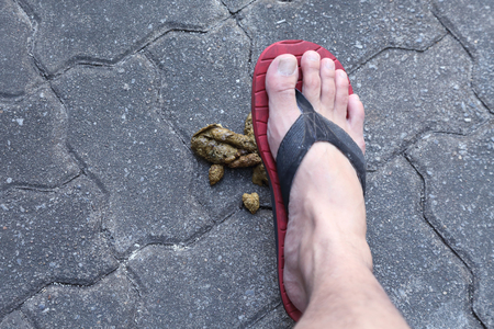 close-up on a man foot step on a dog poop